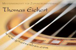 ZK-Partner-Gitarrenbau Eichert-Logo